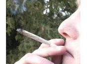 Cannabis: puntare legalizzazione prevenzione? Italia meglio avere nuove forme dipendenza Stato.