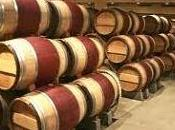 'Wine Tourism' Valtellina