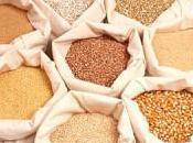 Cereali integrali Farine raffinate