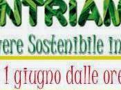 Incontriamoci! Festa Vivere Sostenibile, Transizione. Siamo tutti UNO!
