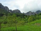 (mie) Piccole Dolomiti