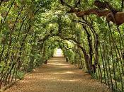 Splendidi giardini città