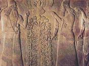 culla dell'umanità: Mesopotamia Sumeri