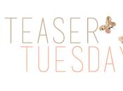 Teaser Tuesday Perché siamo lasciati Daniel Handler