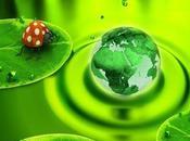 12/06/2014 nuove proposte sviluppo sostenibile