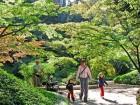 Sviluppo sostenibile spazi verdi, UNI: ecco Prassi riferimento
