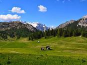 Alta Pusteria portami via: natura, ecotour, benessere enogastronomia sulle Dolomiti