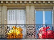 dalla culla alla tomba arrondissement