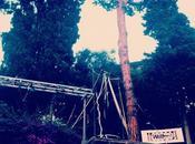 News Instagram: #instaevents Wolford, Disaronno, Sanpellegrino Incontri