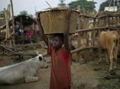 Ebola, l'epidemia Africa occidentale tutto fuori controllo