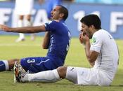 Luis Suarez scusa Giorgio Chiellini
