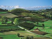 Langhe, Roero Monferrato