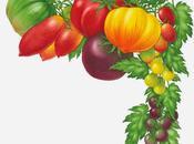 Forme colori sole d'estate: solanaceae nella triade famosa pomodori-peperoni melanzane