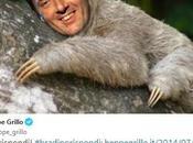 """Grillo Casaleggio: """"Renzi bradipo, risponda subito"""", torna ruggire"""