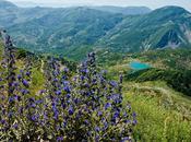Albania monti