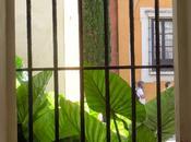 Siviglia: Alcàzar cattedrale