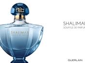 PROFUMO: SHALIMAR SOUFFLE PARFUM GUERLAIN
