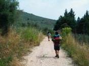Camminare lentezza