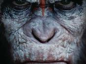 Apes Revolution pianeta delle scimmie, nuovo Film della 20th Century