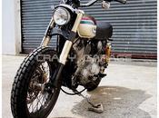 Harley Sportster Scrambler 1988 Crazy Garage