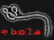 """Ebola, nuovo attacco """"sicilia prima linea"""""""