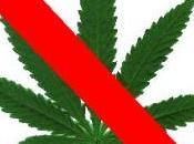 Marijuana libera, perché sarebbe errore