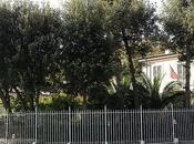Lorenzo Viani, garzoncello Giacomo