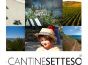 Seligo Settesoli vince l'argento Mundus Vini