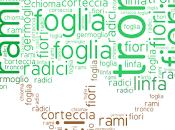 Tagul, nuovo strumento creare nubi parole