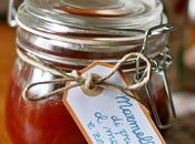 Marmellata prugne, marsala zenzero Damson, ginger