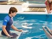Torna cinema L'incredibile storia Winter delfino