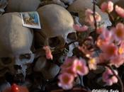 cimitero delle fontanelle culto anime pezzentelle