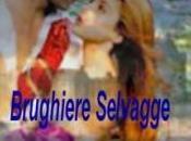 """""""Brughiere Selvagge"""" Lucia Guazzoni"""