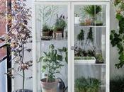 idee realizzare orto balcone casa
