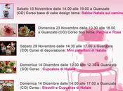 Corsi cake design Guanzate (Co): torte, biscotti, fiori pasta zucchero panettoni decorati