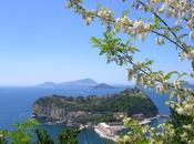 Dieci frasi significative omaggiare bellezza Napoli