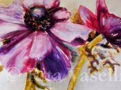 Anemoni wind flowers