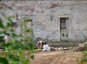 villaggio neolitico scoperto Puglia