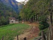 #Girodilaria: Bagno Romagna, come ritrovarsi piccolo borgo termale