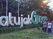 Jatujak Green, shopping notturno Bangkok tinge verde...