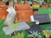 Idee regalo green: l'azienda agricola Remo presenta Hobby Orto Buon appetito aromi