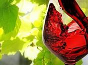 Castellammare ospiterà primo Meeting vino campano. Ecco programma