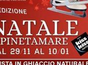 Mercatini Natale Pista Pattinaggio Villaggio Coppola