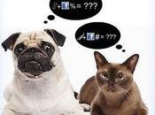 Social Network: utili perdita tempo?