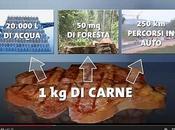 Dossier sulla carne