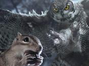 stasera mondo nascosto piccoli animali dimensioni