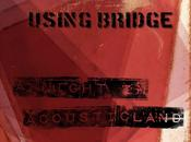 Arriva l'album acustico degli stoner rockers USING BRIDGE