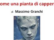 Come pianta cappero Massimo Granchi