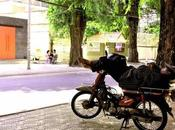 Viaggio Hamed Continua Cambogia: Relax?