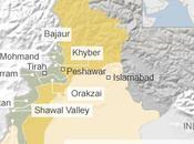 talebani pakistani, sintesi